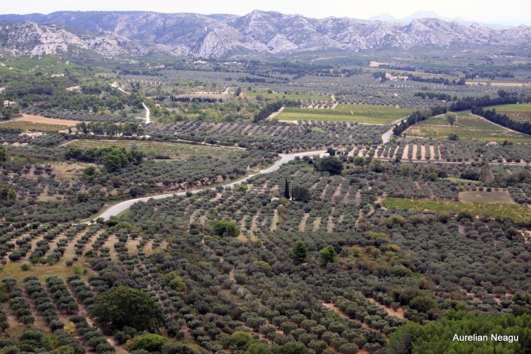 Les Baux de Provence 4