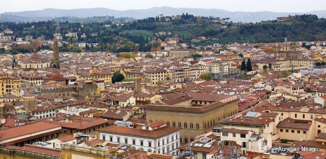 Florenta_Giotto_2