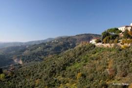 Montecattini Alto8