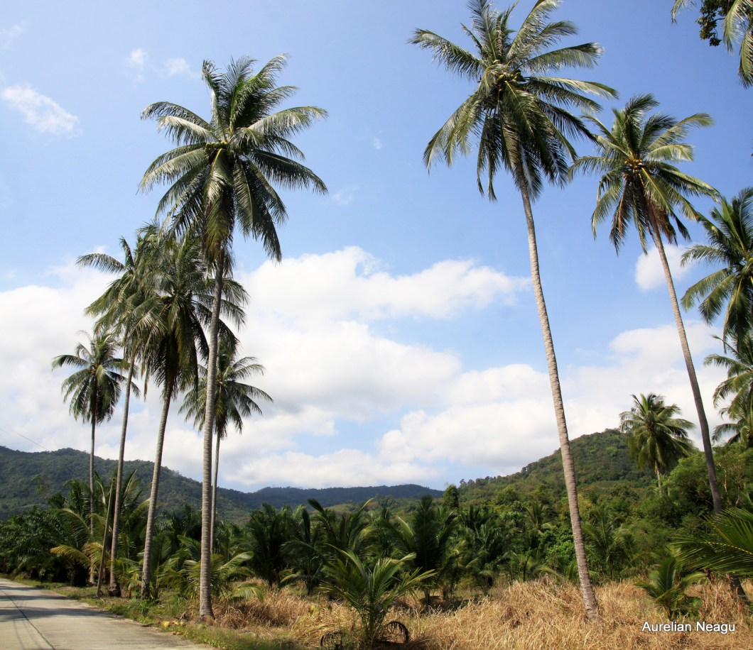 Khanom Thailanda rurala