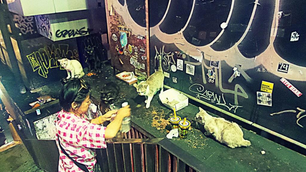 Bangkok Thailand Toleranta