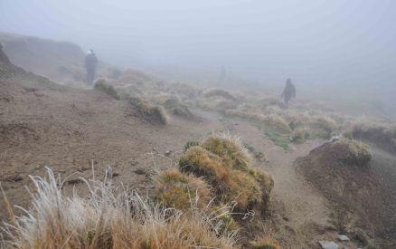 ..into the fog