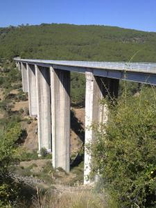 rio-cofio-madrid