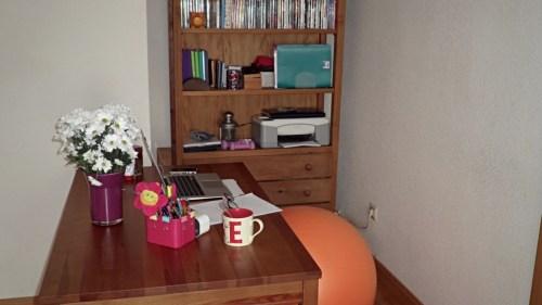 escritorio-erika-martin