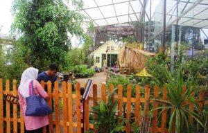 Kebun Binatang Mini PVJ