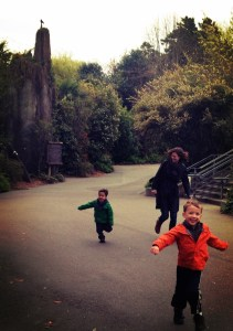 Running at woodland park zoo