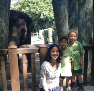 We learned a lot from the elephants at Woodland Park Zoo