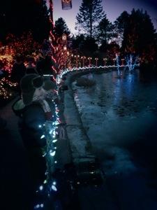 Lights at VanDusen Gardens