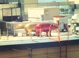 hidden Pike Place market pigs