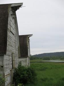 barns at nisqually wildlife refuge