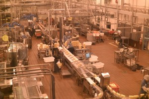 the factory at work