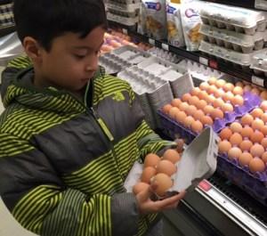 Choosing bulk eggs at Metropolitan Market