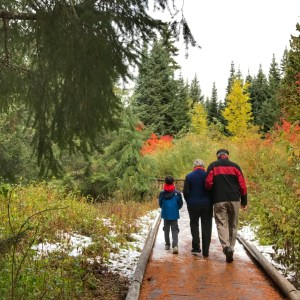 Fall Family Hike at Gold Creek Pond