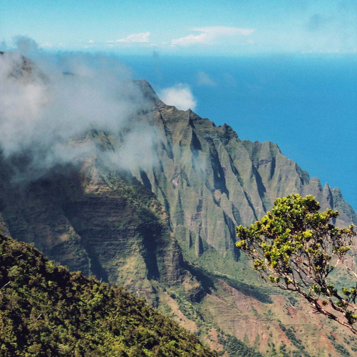 Enter all the contests and go on all the trips: parenting advice for my kids after winning our trip to Kauai