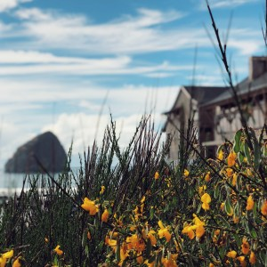 A review of the Headlands Coastal Lodge and Spa on the Oregon Coast by a family of 4 who stayed in a two bedroom cottage
