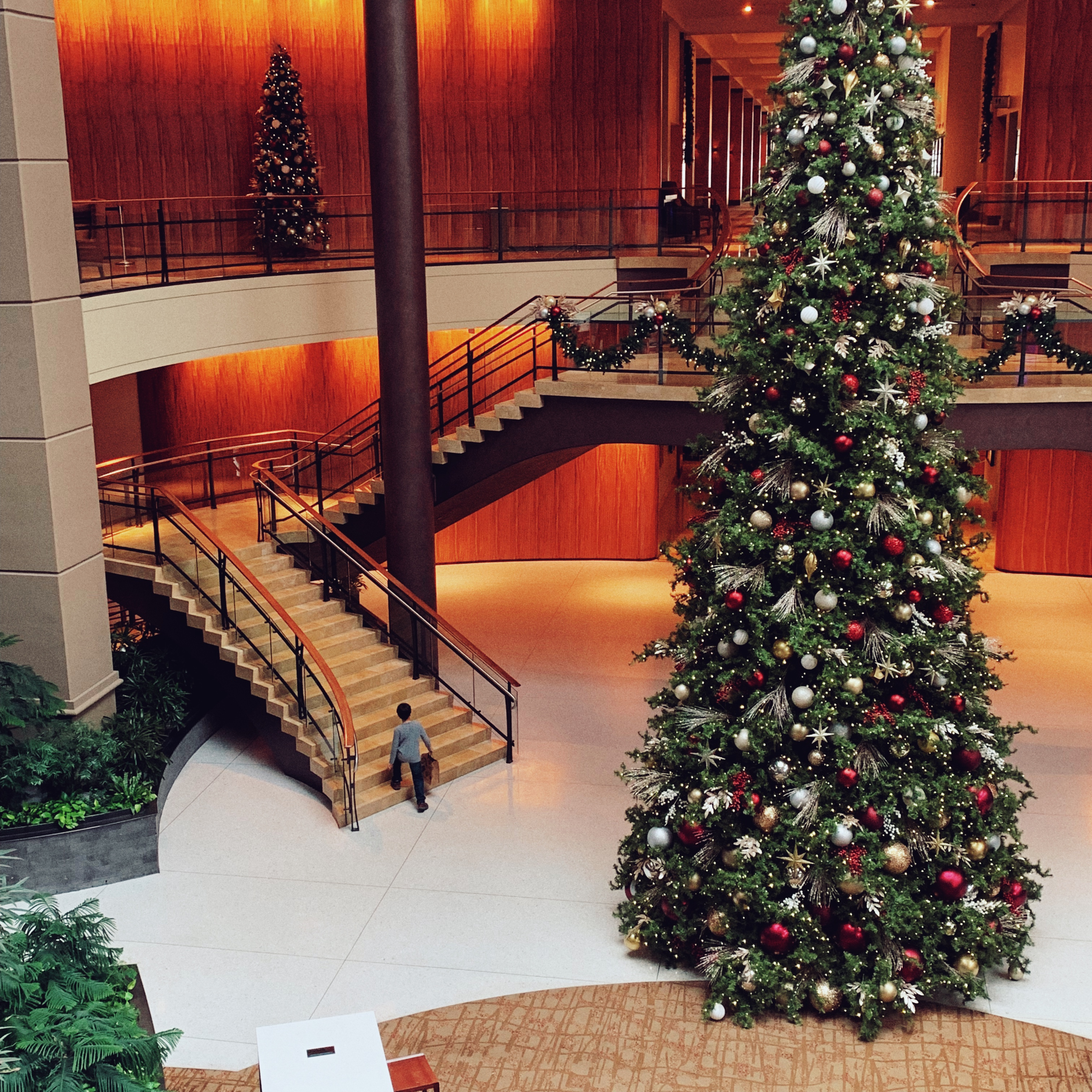 The Hyatt Regency Bellevue is a great place for families to stay for the holidays and it's walkable to Lincoln South Food Hall