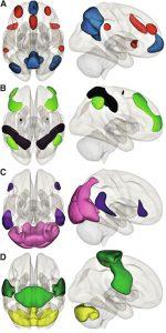 Postoperative Cognitive Dysfunction and Delirium