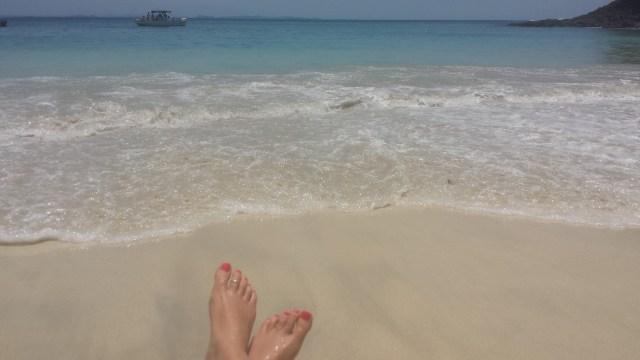 Oe strand foedder6
