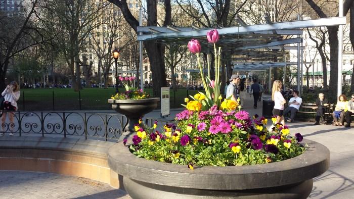 Bybillede forår3