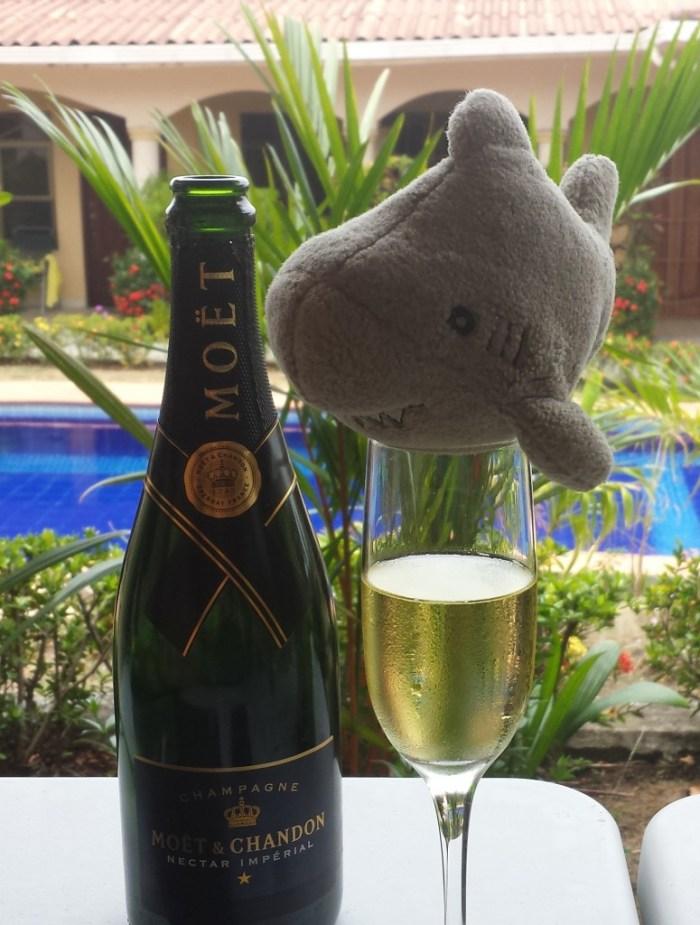 Haj drikker champagne (klippet)