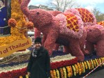 The King and Queen of Thailand sponsored this float promoting the flavors of their country. The baby pink elephants are also a theme on Delirium Tremens Belgian beer bottles -- wonder if their royal highnesses intended the pun?