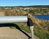 It seems that every historic battle site, Matthew finds himself overcome by the urge to stick his head in a cannon's neck. Should I be worried about this predilection?