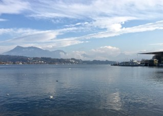 """In the background, you can see the Alps with the clouds rolling in. And if you squint really hard and focus on the center of the water, you'll see a black bird -- a Coot (Fulica atra). It has a white beak that stretches up over its forehead to form a sort of bald spot. That's where the phrase, """"as bald as a coot"""" comes from. Which led to the phrase, """"he's an old coot."""" Although the bird is tiny and adorable, it's a bit grumpy, aggressive, and territorial -- other behaviors that are typically attributed to """"old coots."""""""