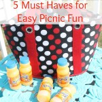 5 Must Haves for Easy Picnic Fun