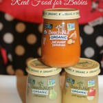 Beech-Nut Organic Real Food for Babies