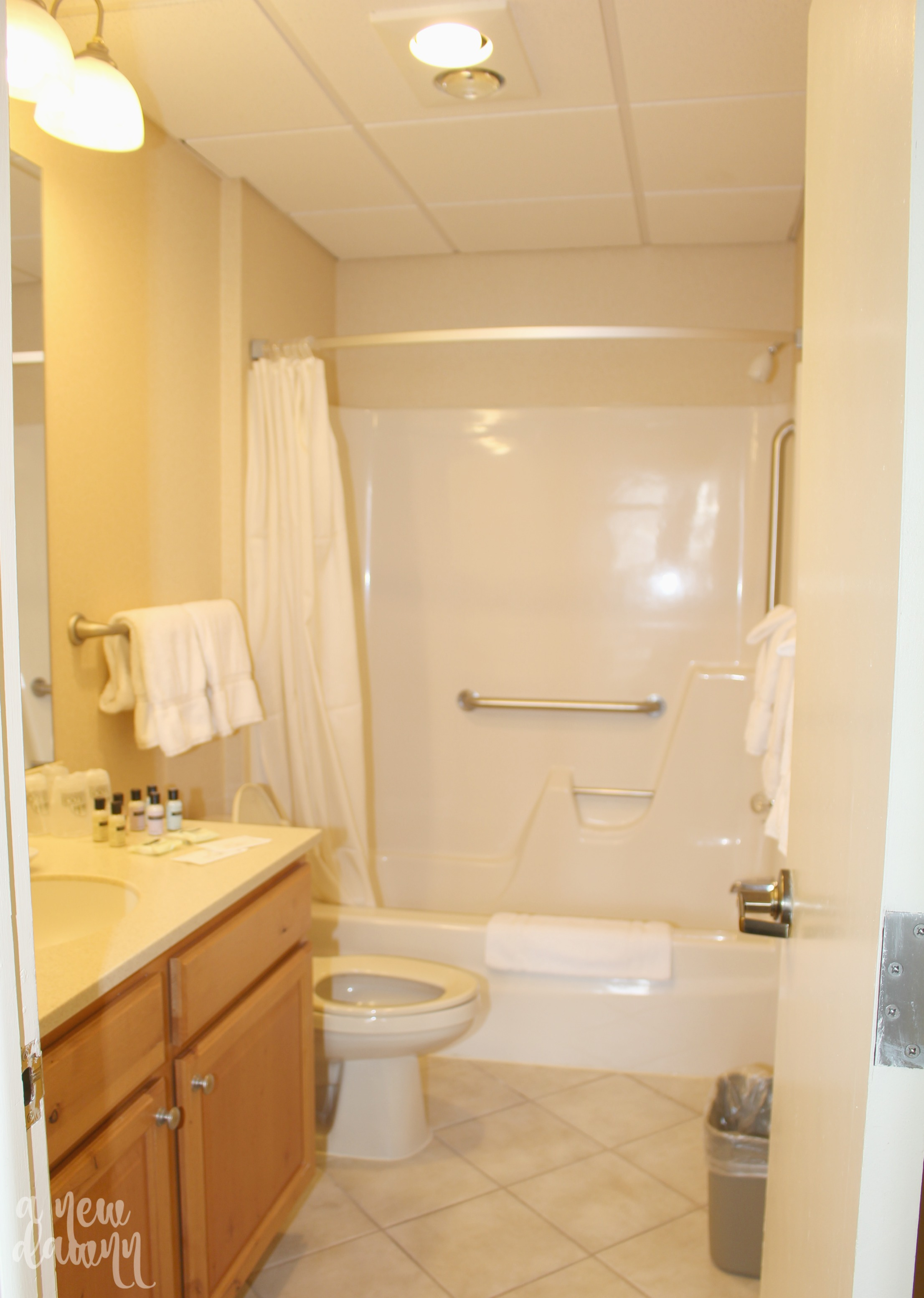 woodloch-main-bath-shower