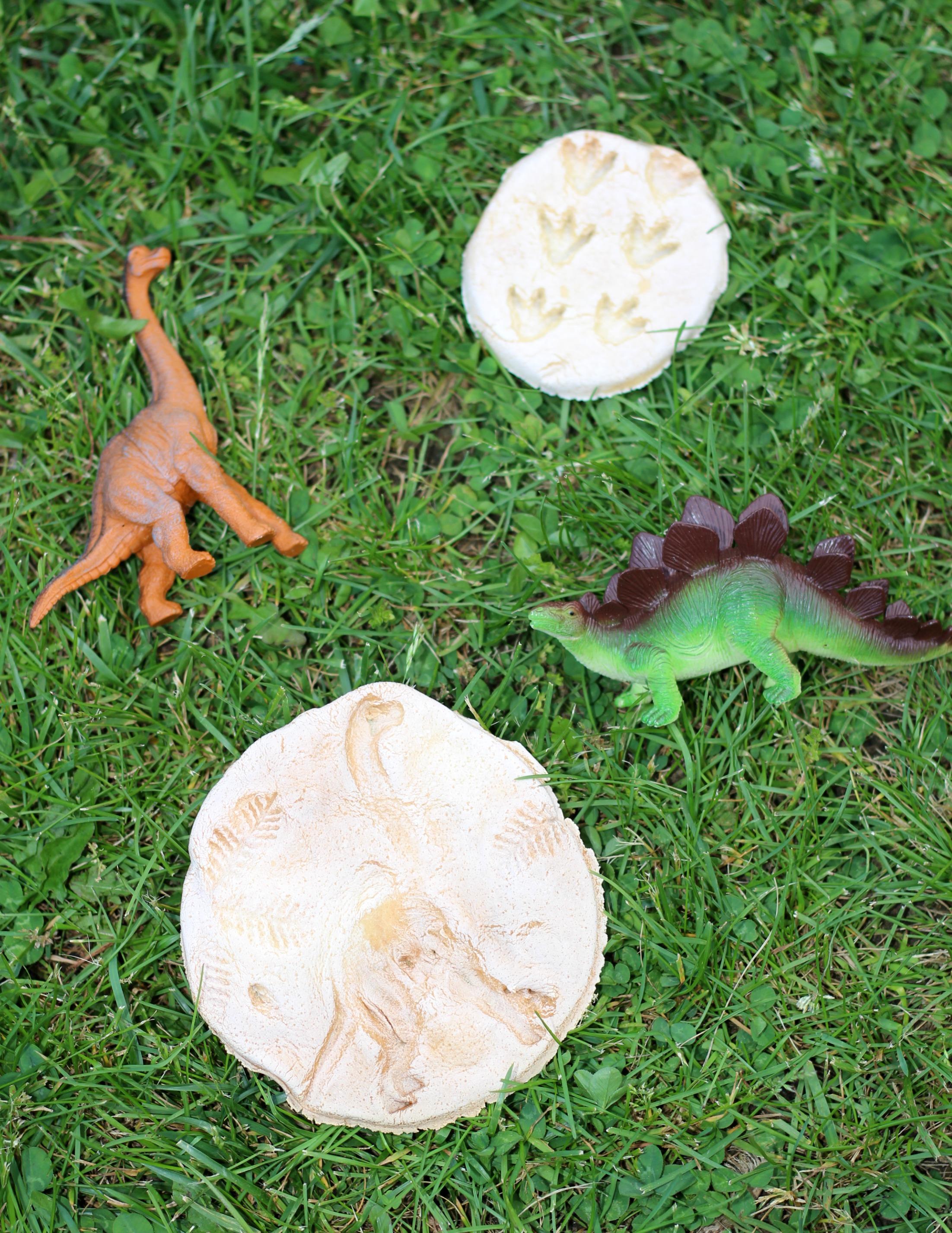 DIY Dinosaur Fossils