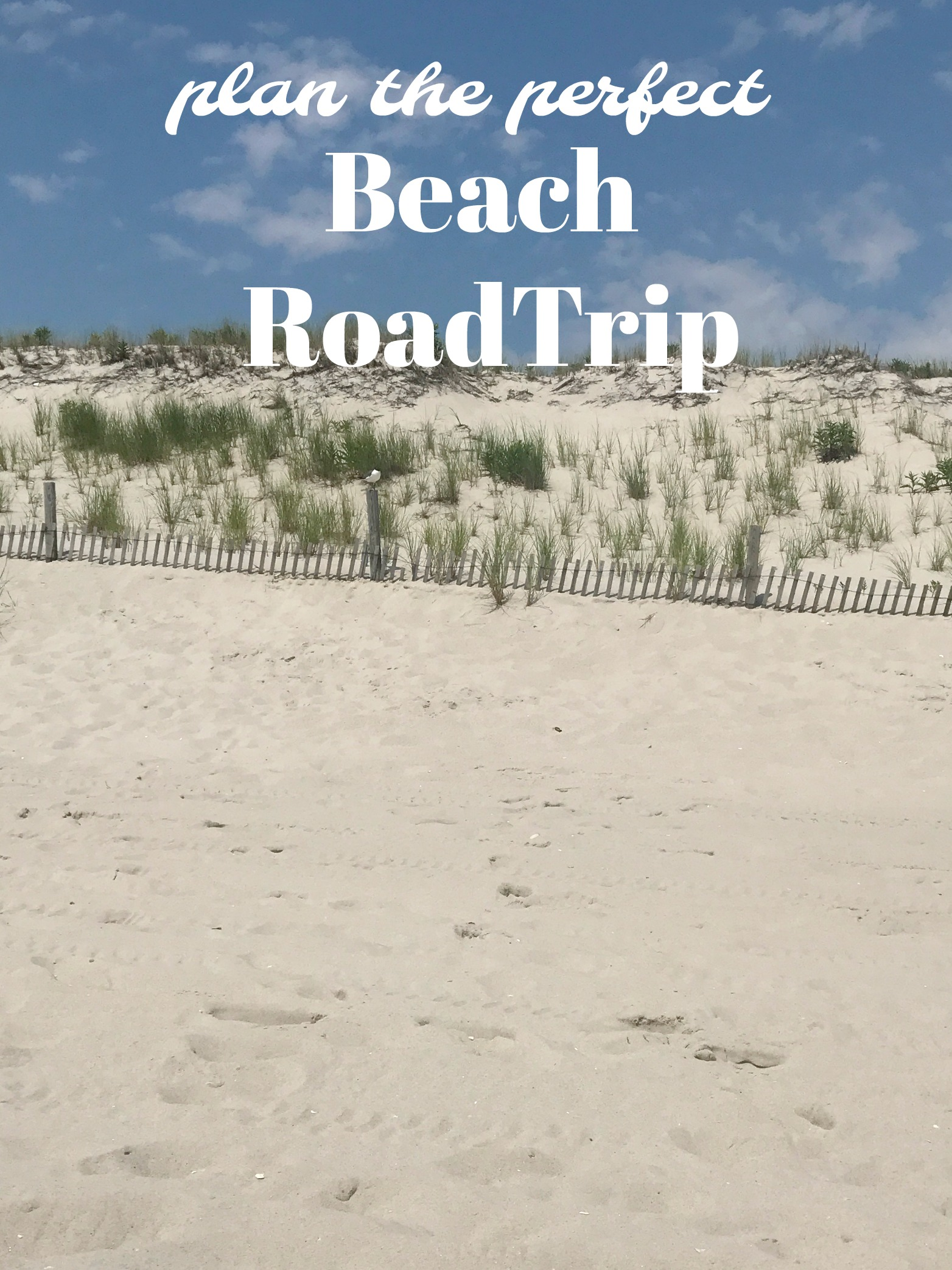 Plan the Perfect Beach Road Trip