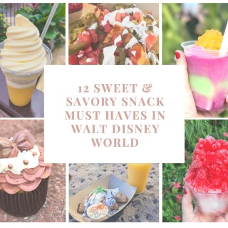 12 Sweet & Savory Must Have Snacks in Walt Disney World