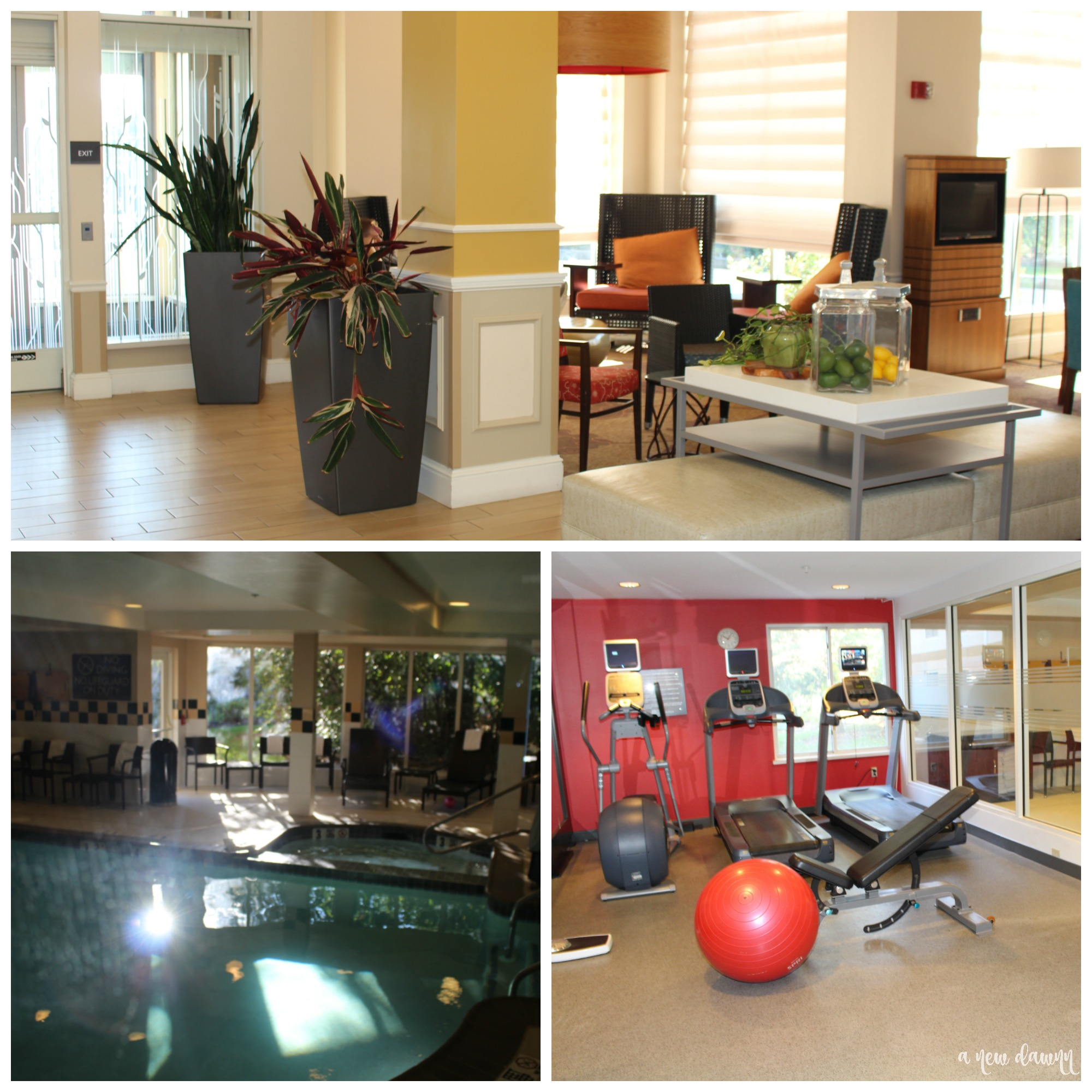 Gym and pool at the Hilton Garden Inn Hershey