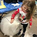 A Behind the Scenes Look at The National Dog Show Presented by Purina®