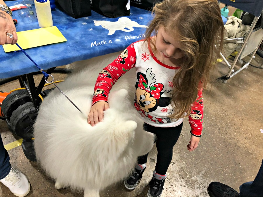 National Dog Show Presented by Purina