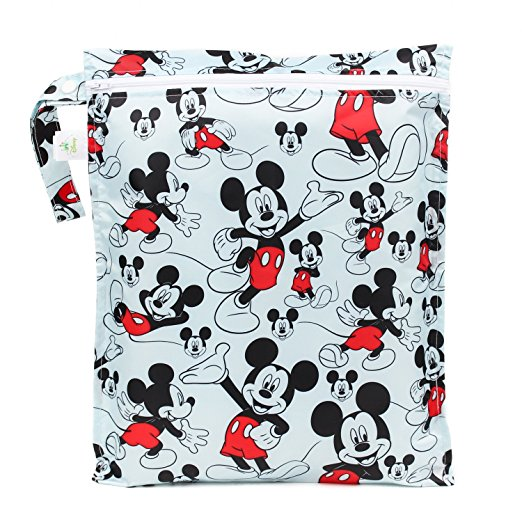 Travel Gifts for Disney Fans