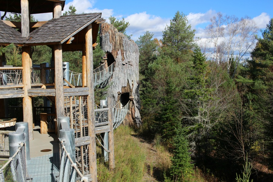 Ultimate Guide to Plan the Perfect Weekend in Lake Placid