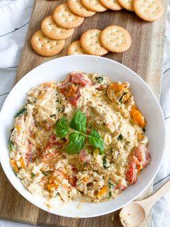 Tomato & Feta Chicken dip in a bowl