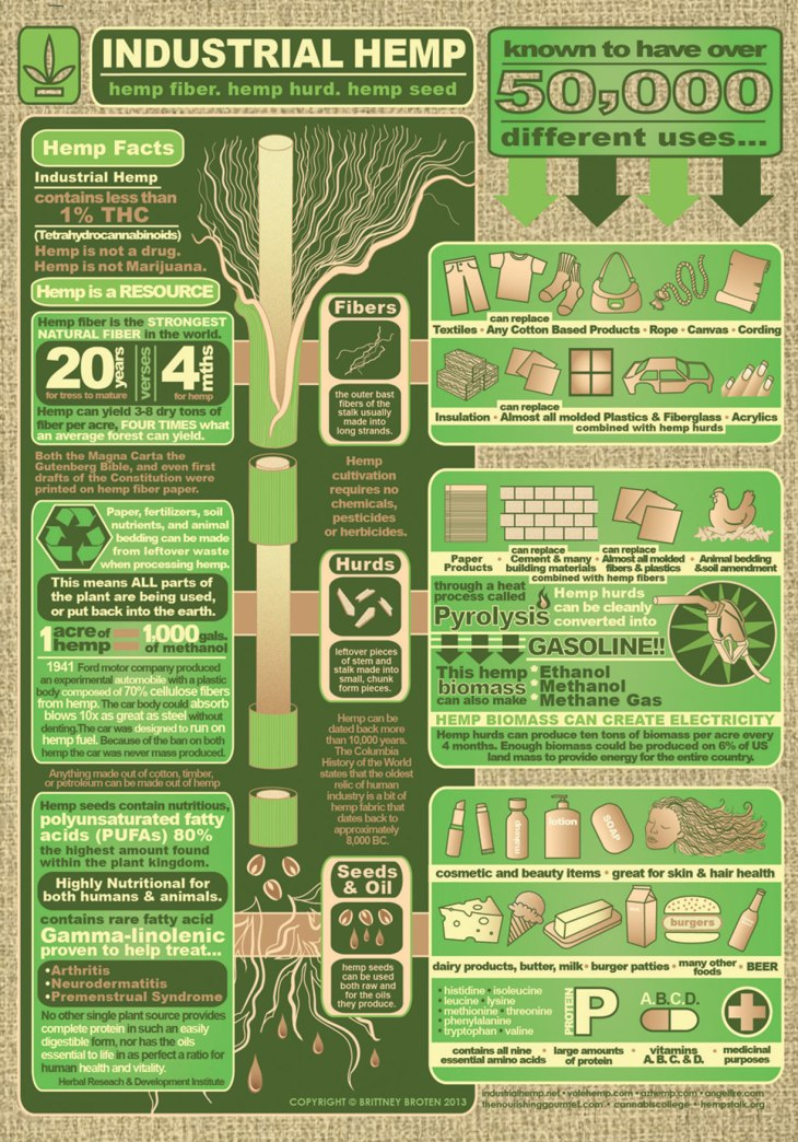 hemp infographic brittney broten