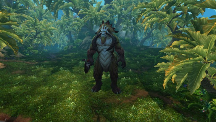 warlords of draenor Grogrond danger