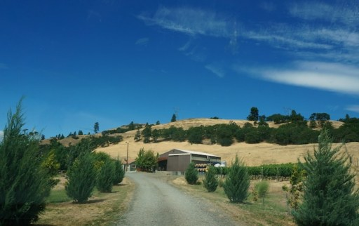 COR winery washington