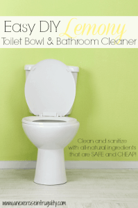 DIY All-Natural Toilet and Bathroom Cleaner