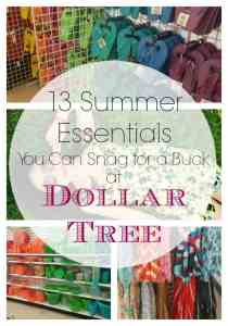 13 Summer Essentials For a Buck at Dollar Tree!