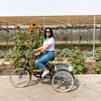 Mazaraa Farm Shop | Abu Dhabi