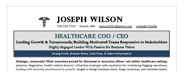 COO_CEO_Healthcare_Resume_Example_top.png