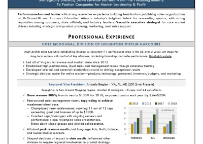 executive resume rvp sales