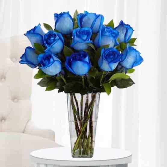 11 Синих Роз