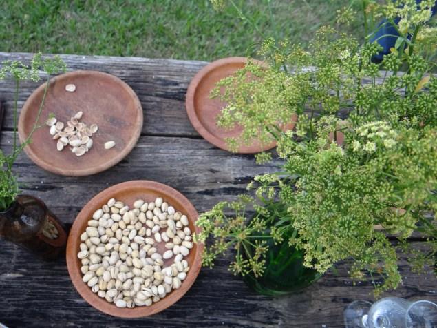 Pistaches orgânicos e Flores de Salsa na decoração ®SKLindemann