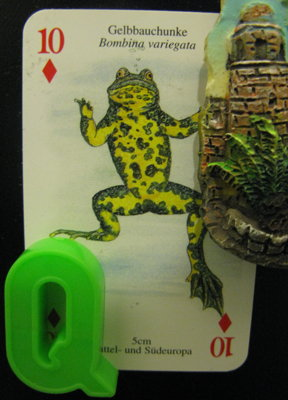 heytherelittlefrog